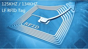 6 Points You Should know about LF(125KHZ) RFID Tag