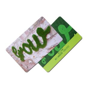 125khz Free Sample Service Hi-tag1 Chip Printable RFID Card For Student