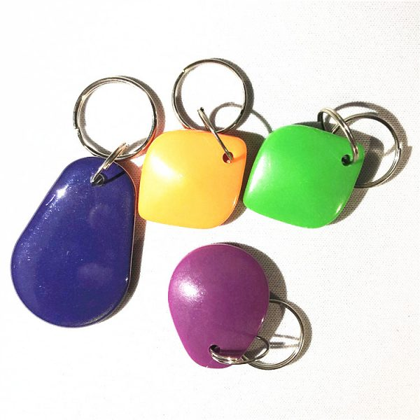 Dual Frequency RFID Key Fob
