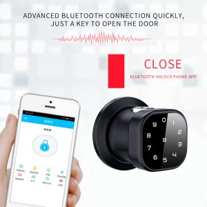 Waterproof Smart Fingerprint Small Door Lock Password Security Bluetooth Home Lock With TT Lock Mobile APP